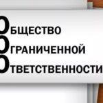 Действия после регистрации ООО: документы на руках